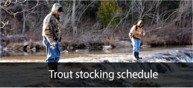 Trout stocking schedule